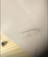 軒天井塗装仕上げ(ファインシリコンフレッシュN90)